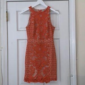 Endless Rose Dress xs